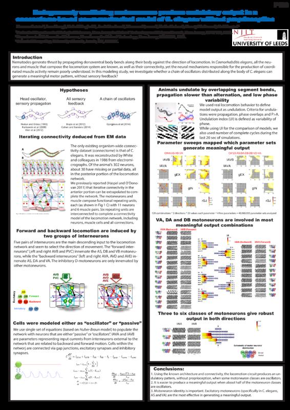 Poster: P116.pdf