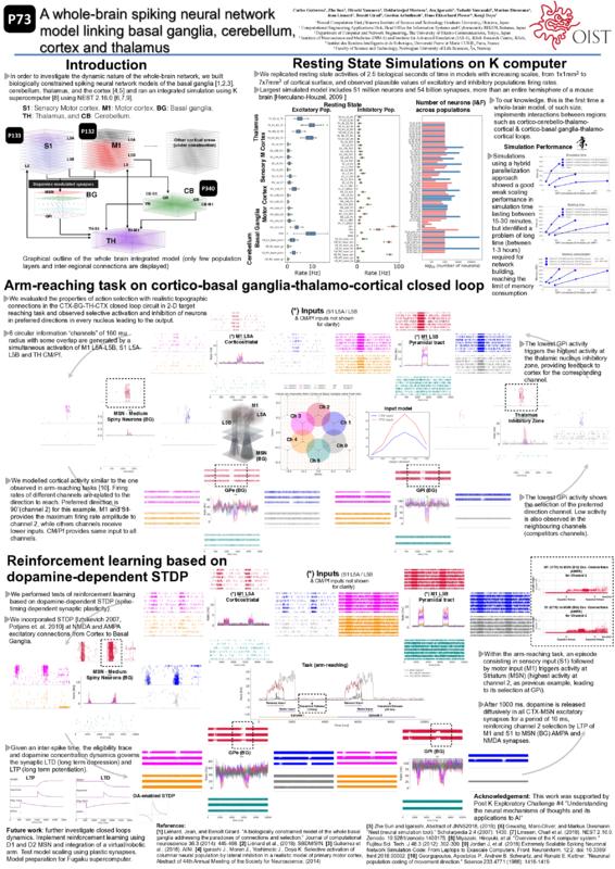 Poster: P73.pdf